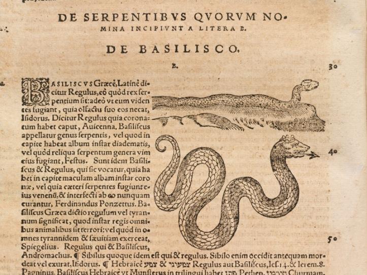 Libro que habla sobre el basilisco.