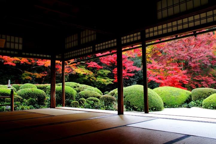 Paisaje Japonés