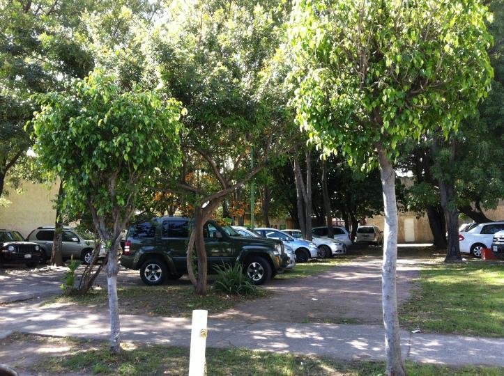 Parque cercano a la FIL que el día de ayer fue usado como estacionamiento.