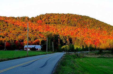 Granja de Maple en Vermont.