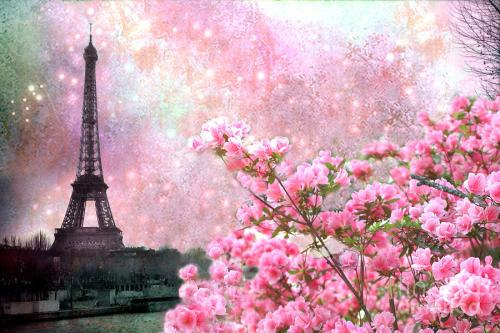 paris-spring-pink-dreamy-eiffel-tower-romantic-pink-flowers-paris-eiffel-tower-twinkle-stars-kathy-fornal