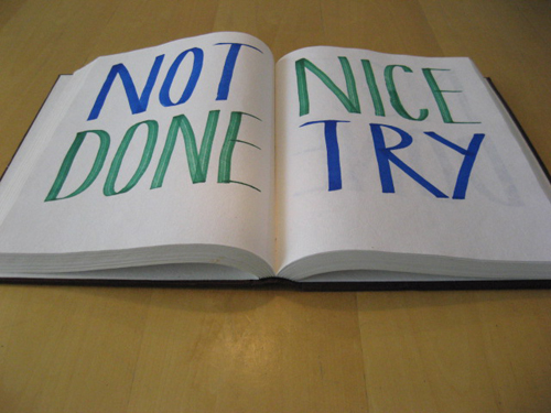 Frans-Baake-Not-done-nice-try-2008-large